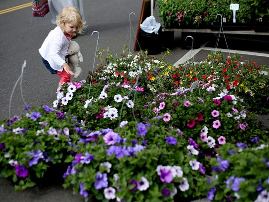 Shylie Walton, 2, of Salem, looks at flowers for sale on the first day of the season for the Wednesday Market in downtown Salem on Wednesday, May 6, 2015.