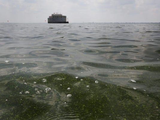 DFP Lake Erie algae (3)