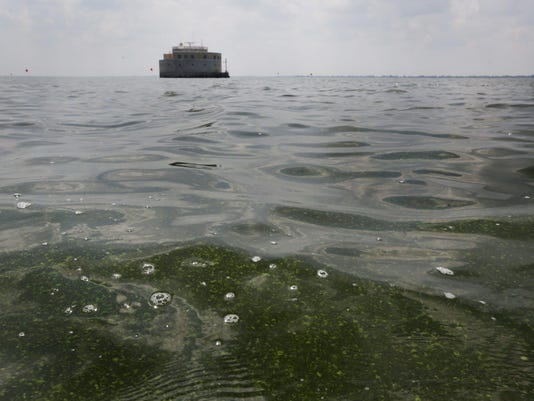 DFP Lake Erie algae (3)