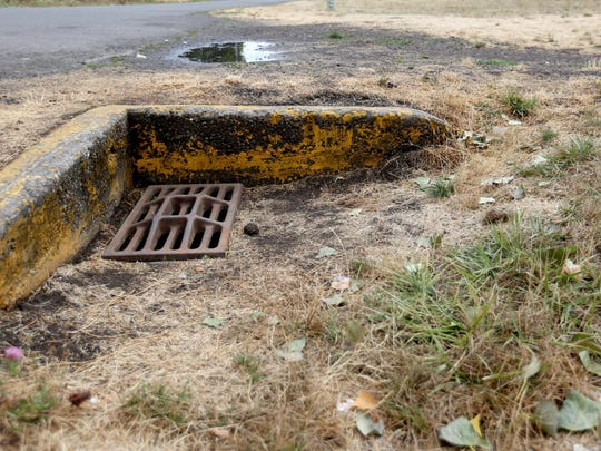 A ditch sits near the edge of the park and the road at Labish Village Park just north of Salem city limits on Sunday, Aug. 30, 2015.