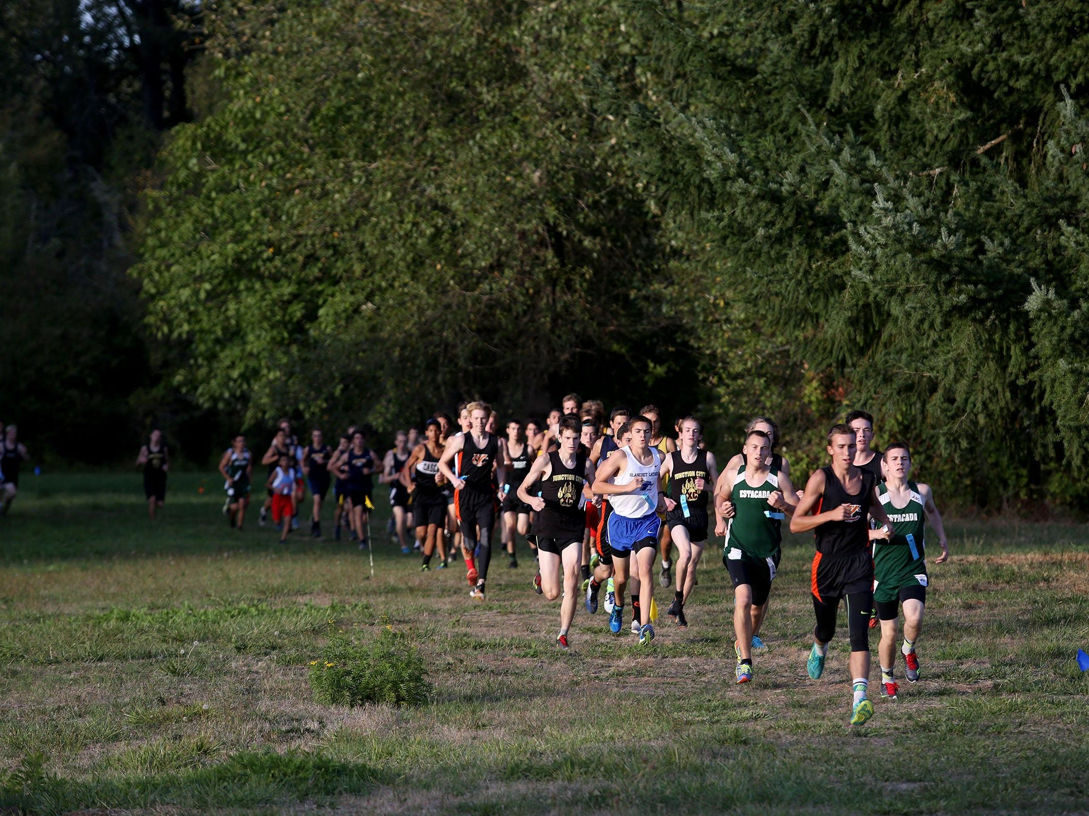 High School runners compete in the Stayton XC Invitational at Willamette Mission State Park on Wednesday, Sept. 23, 2015, Salem, Ore.