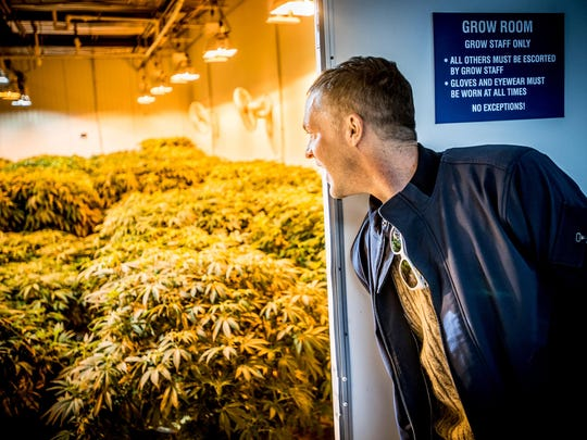 Jay Lassiter peeks into a cannabis grow room at Compassionate Sciences Alternative Treatment Center in Bellmawr, N.J. Lassiter is HIV-positive and uses medical marijuana through New Jersey's legal dispensary system.
