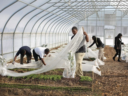 DFP school farm_Phot (4).JPG