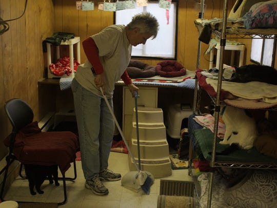 Dearborn Animal Shelter volunteer Sue Barna helps tidy its housing for rescued cats. Barna is in the running for a Volunteer of the Year award contest by Purina Cat Chow.