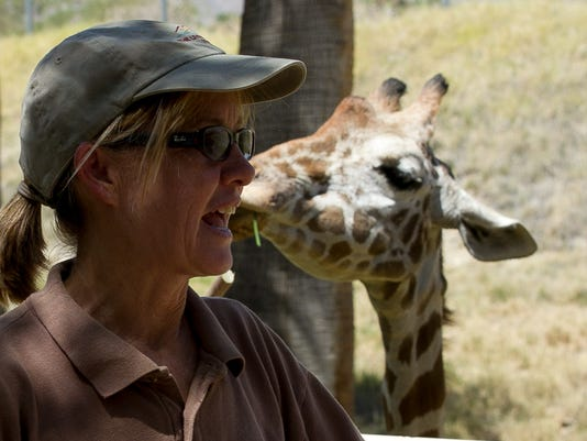 World Giraffe Day at The Living Desert