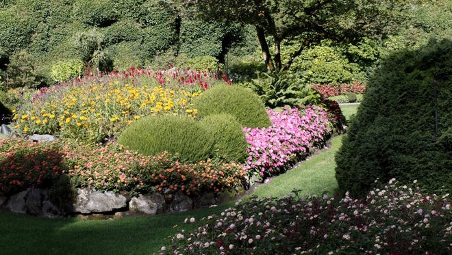 The famous Butchart gardens near Victoria, Canada, have a large evergreen background showcasing colorful plants.