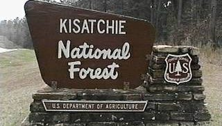 Kisatchie National Forest Day is scheduled for Saturday at the Kincaid Lake Recreational Area in Gardner from 9 a.m. to 3 p.m. Admission to the recreational area is free, as are the activities scheduled.