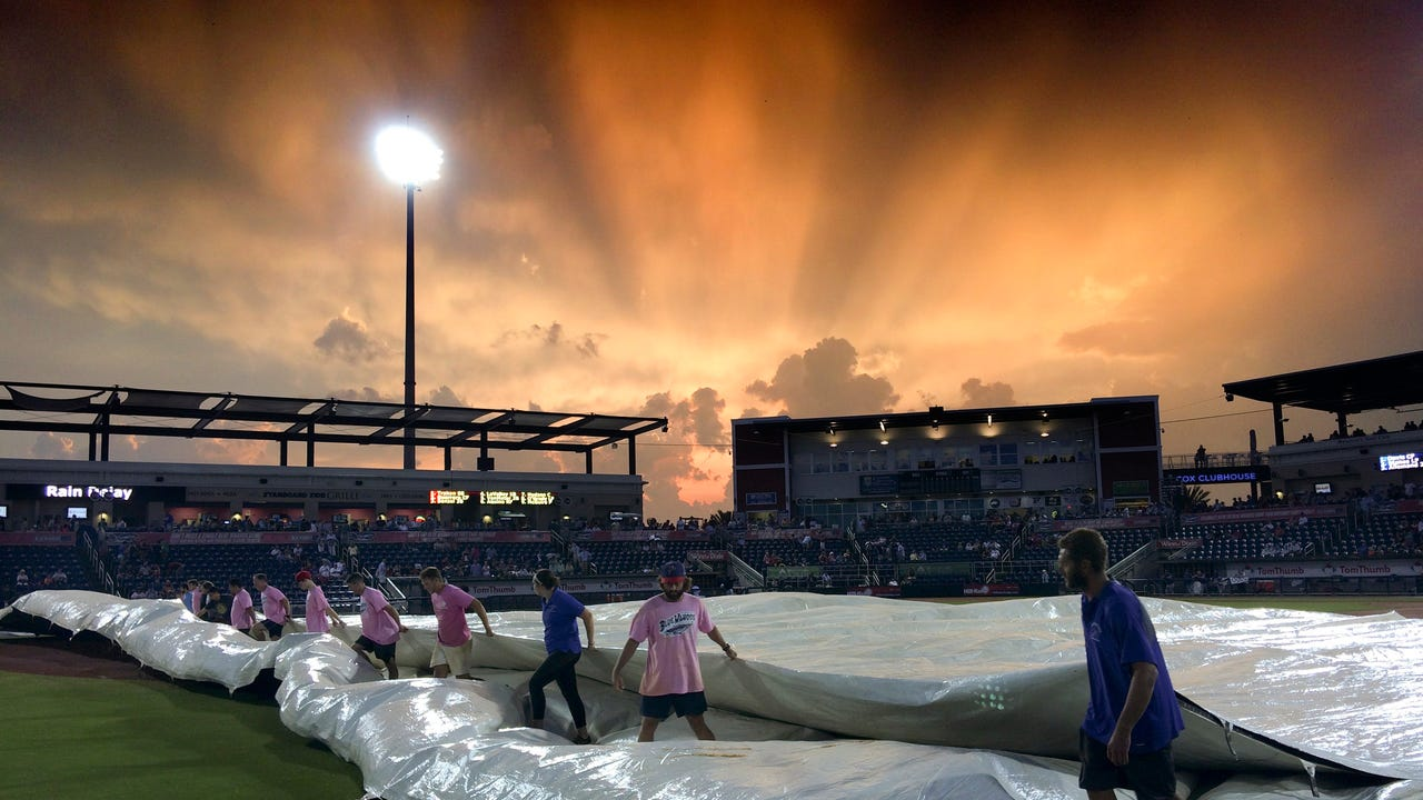 From Pelicans To Blue Wahoos