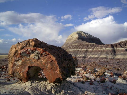 Backcountry of Petrified Forest National Park