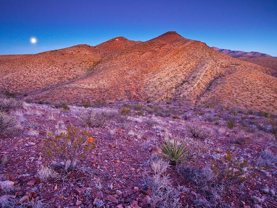 The Prehistoric Trackways National Monument provides hiking, biking and off-highway vehicle trails in the Robledo Mountains.