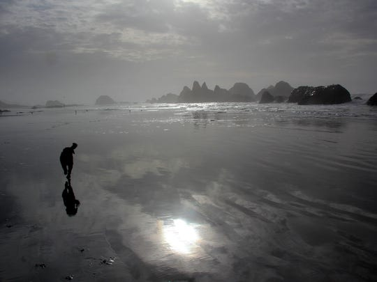 Mater the Dog enjoys hanging out on beaches along the Oregon Coast where his favorite activity is fetch. Well-controlled dogs, in many cases, can be off-leash on the beaches.