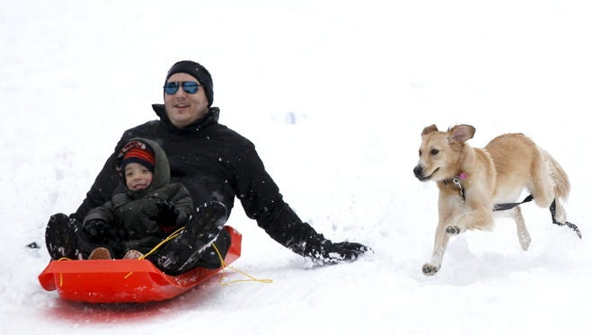 Phil and Daniel Thomas get chased down the hill at Rapid Run Park by their dog Molly after 4.7 inches of snow fell early this morning Saturday, Feb. 21. Today's forecast includes a mix of freezing rain and snow.