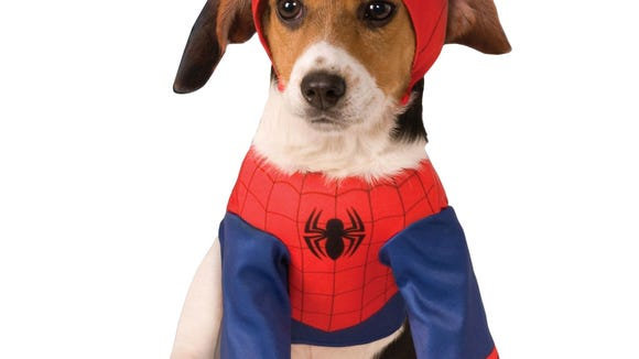A Spiderman costume for dogs for Halloween from Target.