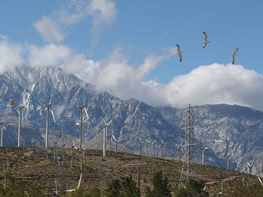 Birds fly against the wind near Painted Hills north of Palm Springs, with wind turbines in the background, on Feb. 26, 2018.