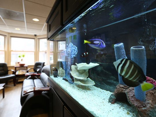 An aquarium in the waiting room at Dr. Dwayne Bodie's