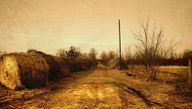 """""""Straw Hill Road"""" by Mark Sean Orr"""