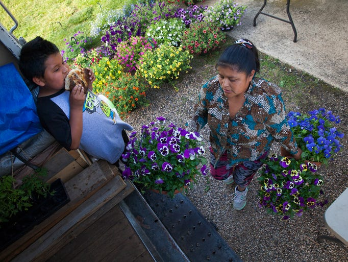 Claudia Balentin packs up flowers from her stand at the Waynesboro Farmers Market as her son, Saul Balentin, 7, snacks on bread from one of the other vendors Wednesday, May 7, 2014.