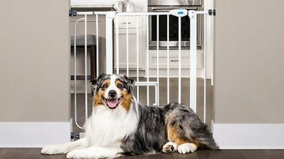 You can use this gate to block off rooms where your dog isn't allowed.