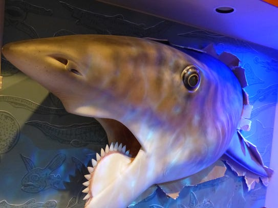 """""""The Buzzsaw Sharks of Long Ago"""" is on display at the"""