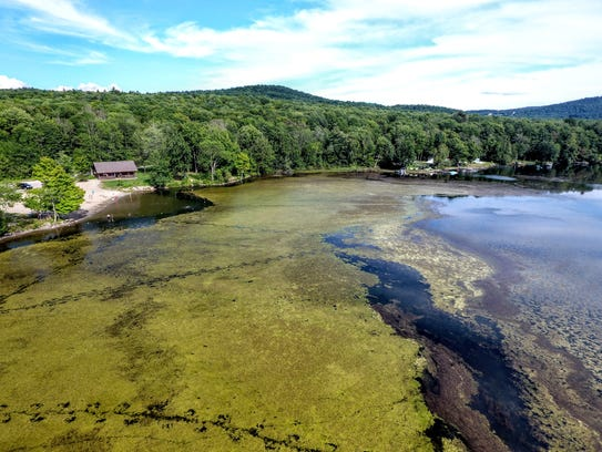 Last summer, milfoil infestation choked off large sections