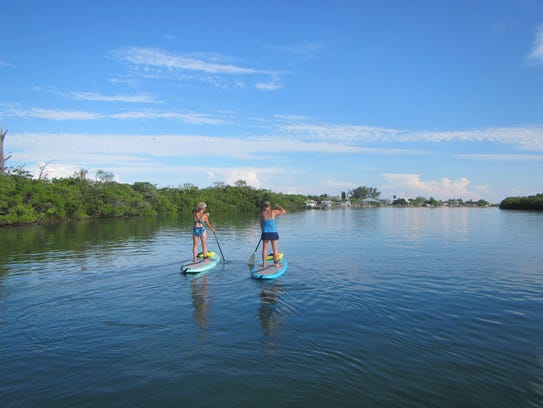 Join an eco-tours led by Hooked on SUP to get up close