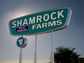 No. 79: Shamrock Foods Co. | Dairy and other food products.
