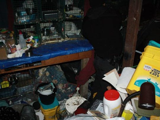 Animal control rescued 21 cats found Tuesday in traps in an unheated garage at an Ypsilanti Township property, according to the Humane Society of Huron Valley.