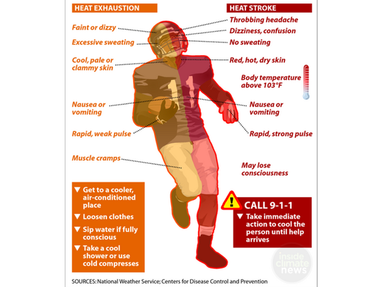 Comparing heat exhaustion and heat stroke.