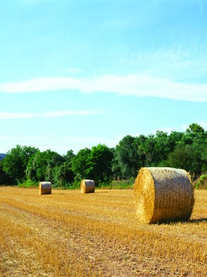 According to a Cornell University study, US agriculture uses approximately 1 billion pounds of plastic each year protecting forage.