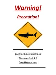 Police warning about recent shark sightings at Cape