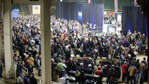 Rows of Angus breeders, commercial producers and stock