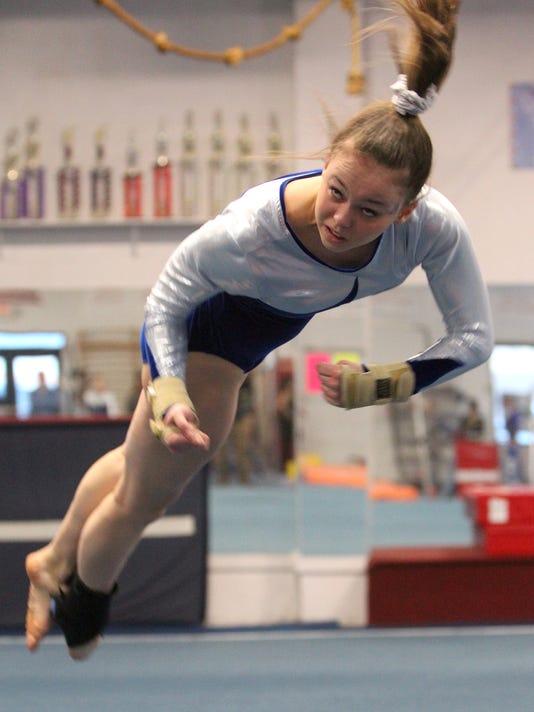 Division I and II Gymnastics championships
