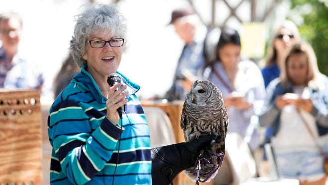 Natalie Gray of the Ojai Raptor Society talks about Spooky a barred owl during the Owl Festival held Sunday at the Olivas Adobe in Ventura.