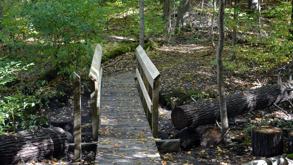 The newly repaired Red Trail bridge at Gosnell Big Woods Preserve. (Provided photo)