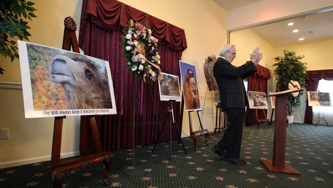 The Rev. William Donahue speaks of the life and impact on others by Princess, a camel that resided at Popcorn Park Zoo, Sunday, Feb. 2, 2014, at the Layton's Home For Funerals in Forked River, N.J.