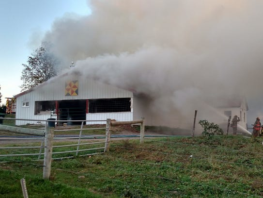All cows were saved after a fire destroyed a dairy