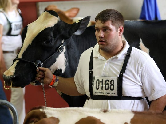 Paul Grulke, from Dodge County, waits to re-enter the ring during the Dairy Showmanship junior show at the Wisconsin State Fair. Grulke's cow, Smith-Crest-TW SH Virgie-ET has earned the Star of the Breed award by Holstein Association USA.