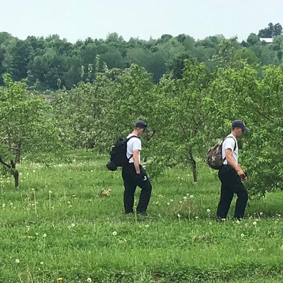 Searchers in orchards to the west of the command post