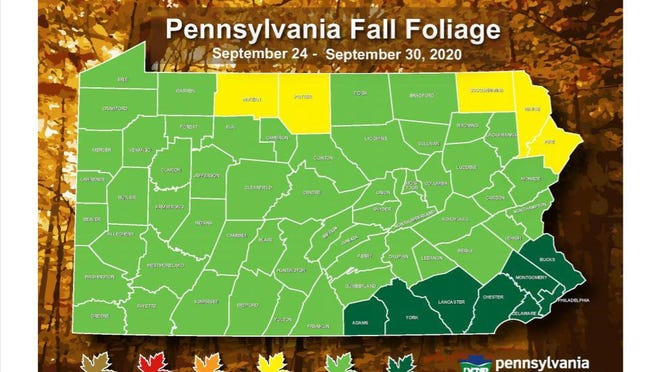 The Pennsylvania Department of Conservation and Natural Resources Bureau of Forestry forecast for fall foliage in Pennsylvania for the week of Sept. 24-30, 2020.