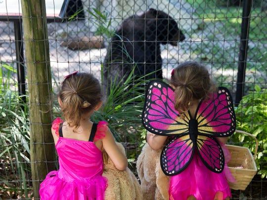 Adriana and Serafina Mills, both 3, look at the bear