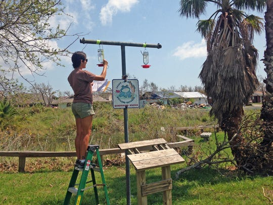King Ranch nature guide Whitney Burbage prepares to fill one of the feeders the King Ranch crew is maintaining at six Aransas Pathways sites.