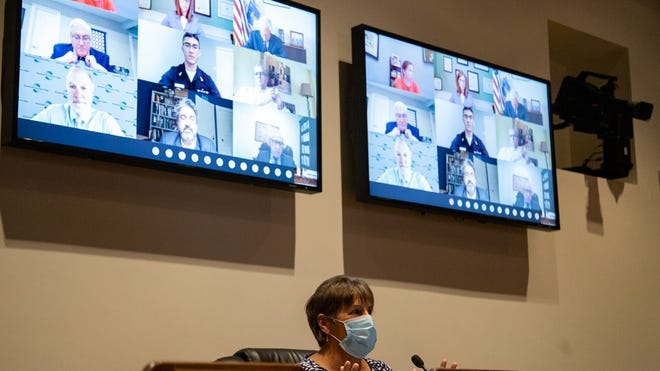 """Sen. Anne Gobi said the higher education sector has displayed """"the patience of Job through all this but also the flexibility of Gumby."""" Gobi and Rep. Jeff Roy co-chaired a Higher Education Committee hearing Tuesday in a State House meeting room; guests testified remotely by webcam."""