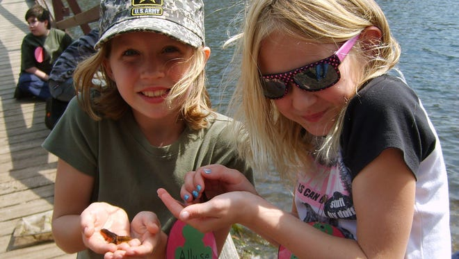 Girls check out a newt they caught in a net at Stokes State Forest.