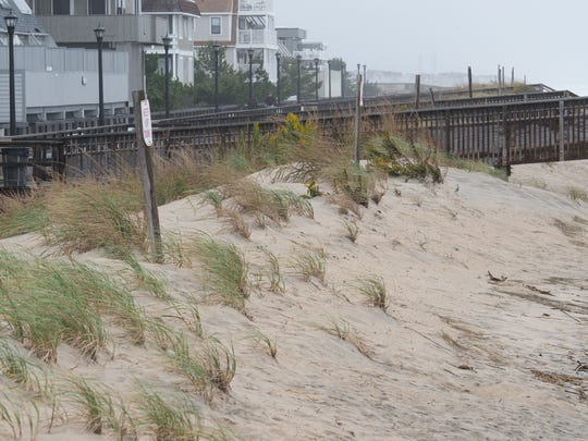 View of the beach grass and dunes at Bethany Beach.