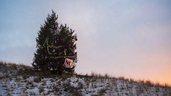 The Noel Tree stands alone by Interstate 15 near Manchester Wednesday, Dec. 2, 2015. It was decorated in memory of a Conrad teacher who admired the tree's tenacity.