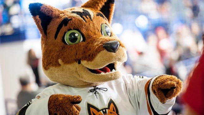 The Fayetteville Marksmen will begin their 2021-22 hockey season in October.