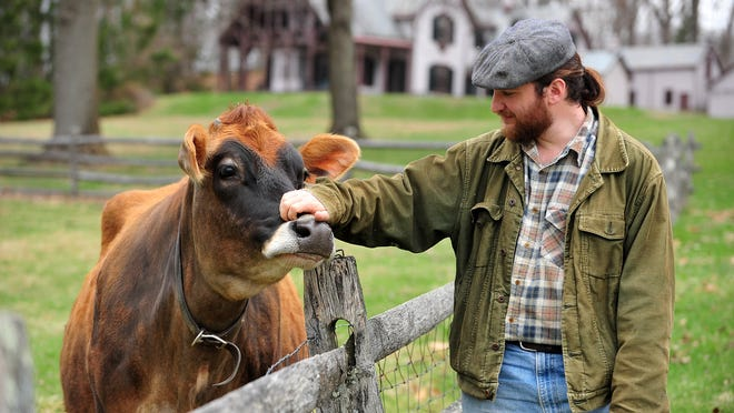 With The Willows in the background, Dan Rosenberg greets a friendly cow named Caraway. Rosenberg is Fosterfields' new farm foreman as of February.