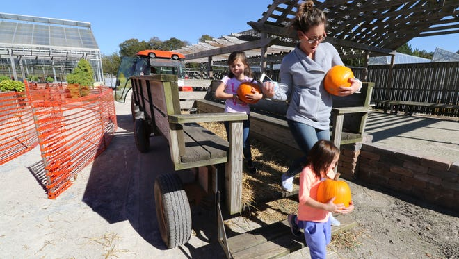"""""""You picked them, you carry them,"""" Ashley Parr of Mukwonago tells daughters Ilsa, 4 (back) and Alison, 5, as they return on a ride through a pumpkin patch at the Prospect Hill Garden Center in New Berlin on Sept. 30."""