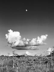 """This classic Clyde Butcher photograph is titled """"Moonrise."""""""