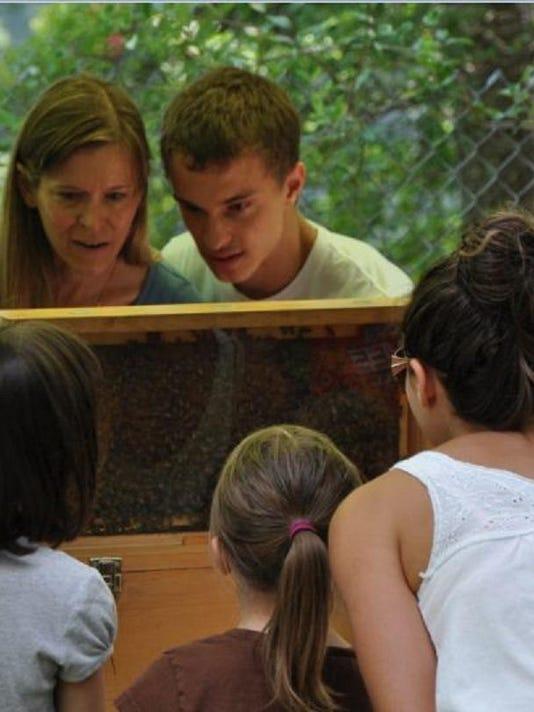 JIP-bee-hive